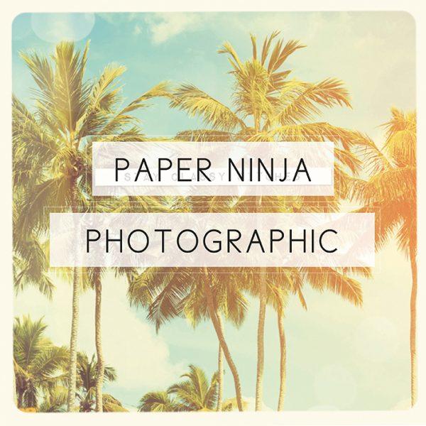 Paper Ninja Photographic