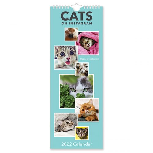 C22034 Cats on Instagram Slim Calendar