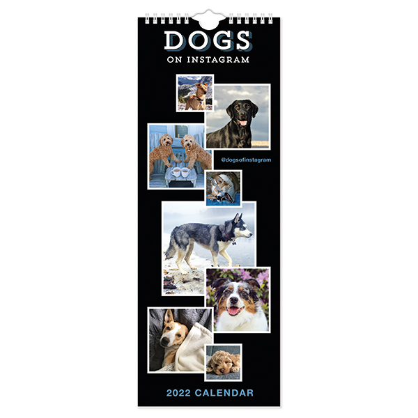 C22039 Dogs on Instagram Slim Calendar