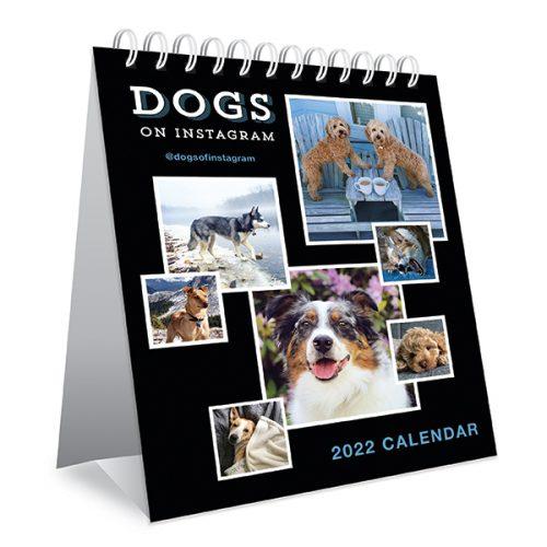 Dogs on Instagram Desk Calendar