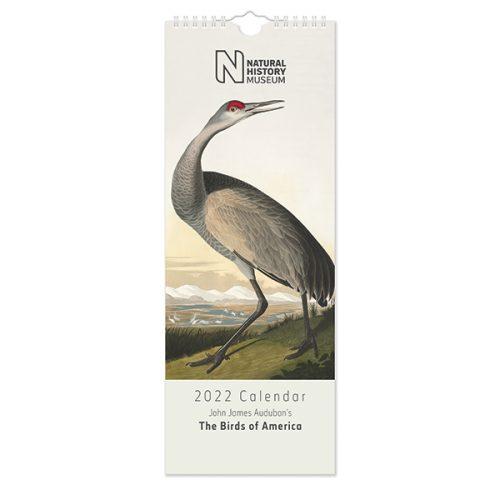 C22083 NHM Birds Slim Calendar