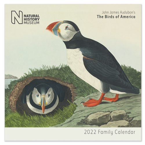C22084 NHM Birds SQ Family Calendar