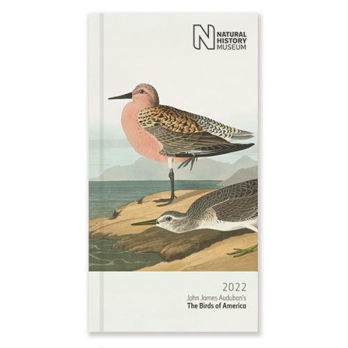 D22527 NHM Birds Slim Diary