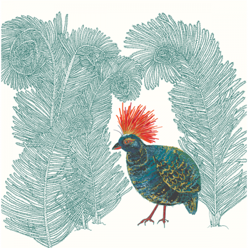 Roul-roul Partridge Bird